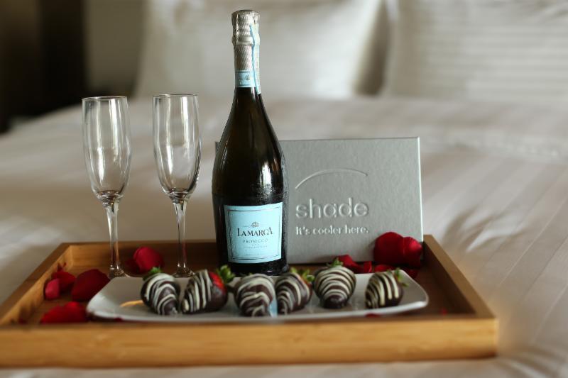 Shade Hotel Redondo Beach Valentine's Day Package
